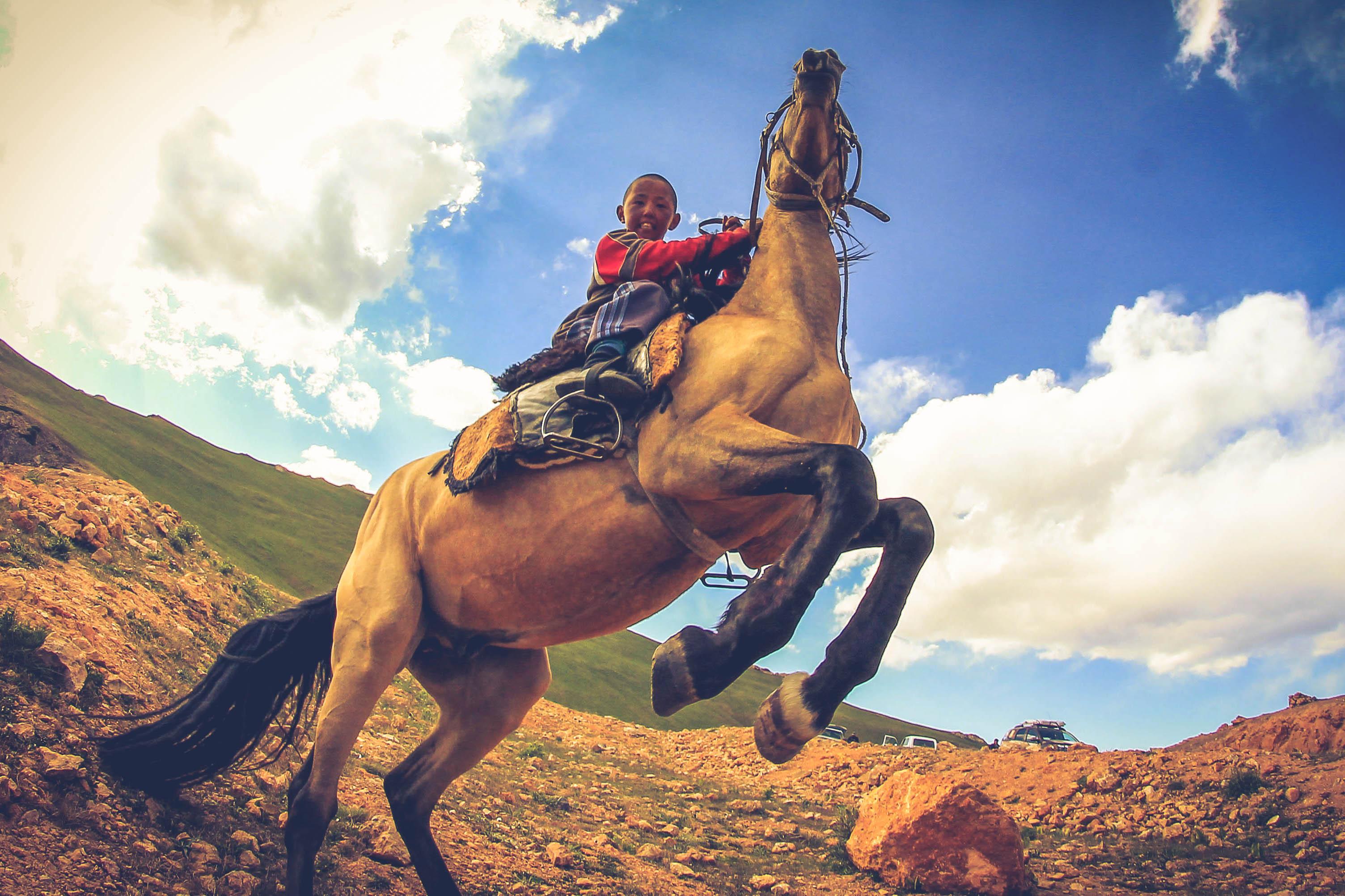 где картинки джигит на коне определить острый